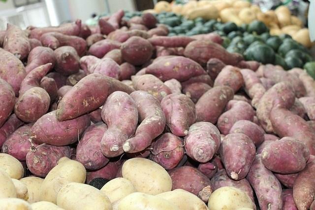 assortiment de pommes de terre